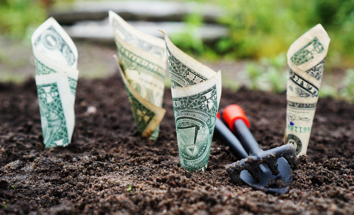 5 Dividend-Paying Stocks to Consider in 2019 – Thoughts on